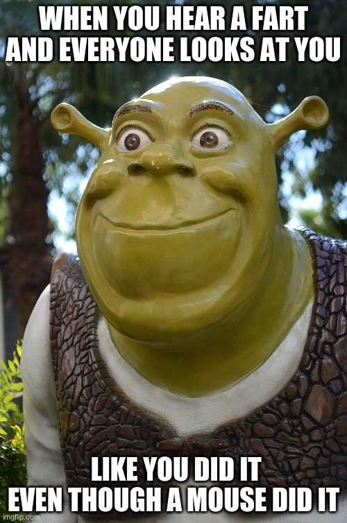 mouse fart |  WHEN YOU HEAR A FART AND EVERYONE LOOKS AT YOU; LIKE YOU DID IT EVEN THOUGH A MOUSE DID IT | image tagged in shrek screaming | made w/ Imgflip meme maker
