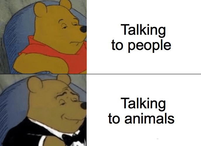 Can You hear me now |  Talking to people; Talking to animals | image tagged in memes,tuxedo winnie the pooh,animals,chill,grin,spin | made w/ Imgflip meme maker