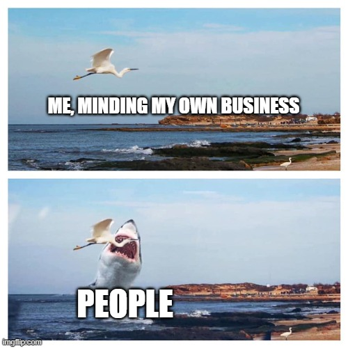 every day |  ME, MINDING MY OWN BUSINESS; PEOPLE | image tagged in plans vs life | made w/ Imgflip meme maker