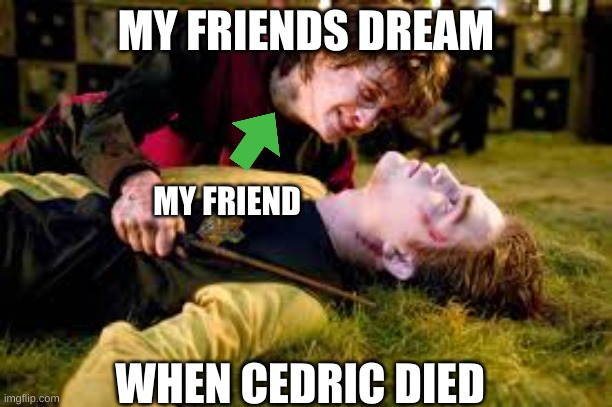 All girls who thought Cedric was cute |  MY FRIENDS DREAM; MY FRIEND; WHEN CEDRIC DIED | image tagged in death of cedric diggory | made w/ Imgflip meme maker