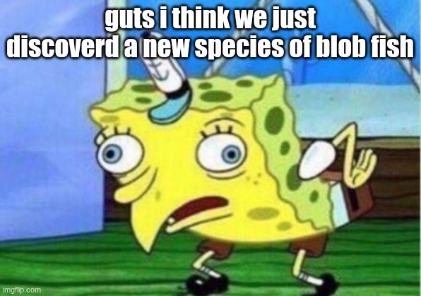 Mocking Spongebob Meme |  guts i think we just discoverd a new species of blob fish | image tagged in memes,mocking spongebob | made w/ Imgflip meme maker