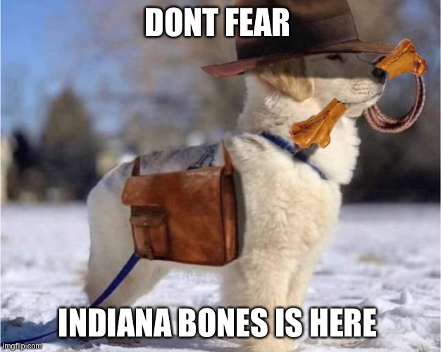 Dont fear indiana bones is here |  DONT FEAR; INDIANA BONES IS HERE | image tagged in funny,memes,fun,funny memes | made w/ Imgflip meme maker