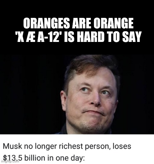 Roses are Green ? |  ORANGES ARE ORANGE 'X Æ A-12' IS HARD TO SAY | image tagged in elon musk,money,hard to swallow pills | made w/ Imgflip meme maker
