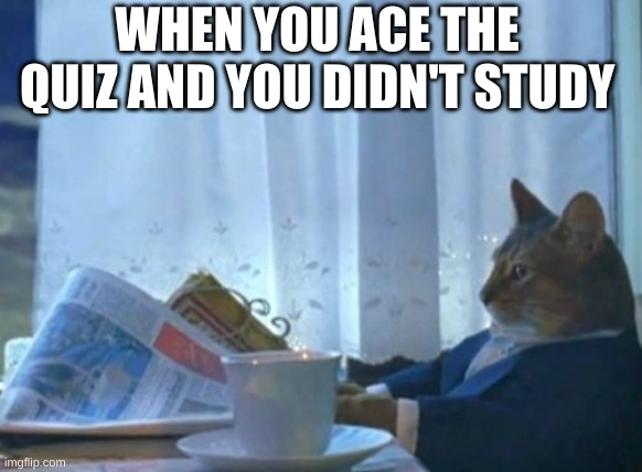 some kids in your class |  WHEN YOU ACE THE QUIZ AND YOU DIDN'T STUDY | image tagged in memes,i should buy a boat cat | made w/ Imgflip meme maker