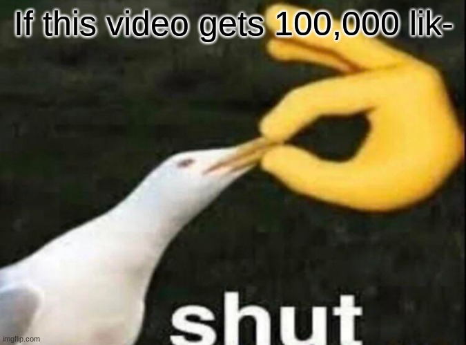 STOP ASKING FOR LIKES YT CREATORS |  If this video gets 100,000 lik- | image tagged in shut | made w/ Imgflip meme maker