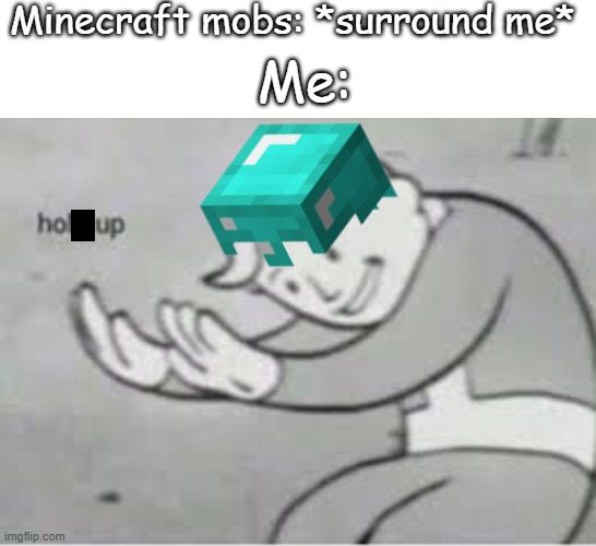 hole up in the ground or you die |  Minecraft mobs: *surround me*; Me: | image tagged in text box,hol up | made w/ Imgflip meme maker