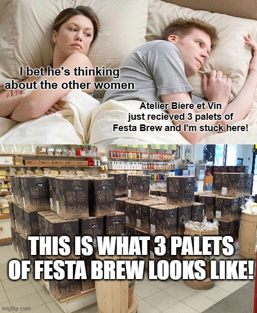 I bet he's thinking about the other women; Atelier Biere et Vin just recieved 3 palets of Festa Brew and I'm stuck here! THIS IS WHAT 3 PALETS OF FESTA BREW LOOKS LIKE! | image tagged in memes,i bet he's thinking about other women | made w/ Imgflip meme maker