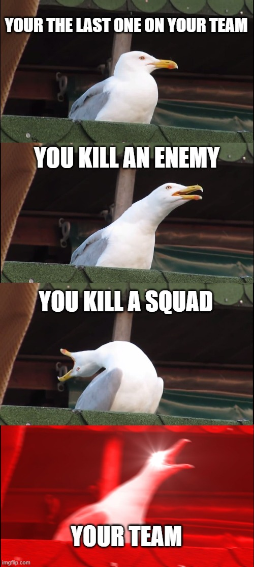Inhaling Seagull Meme |  YOUR THE LAST ONE ON YOUR TEAM; YOU KILL AN ENEMY; YOU KILL A SQUAD; YOUR TEAM | image tagged in memes,inhaling seagull | made w/ Imgflip meme maker