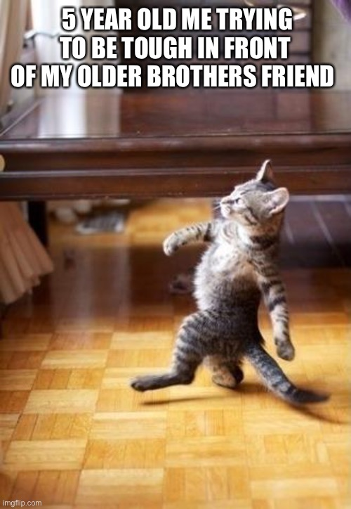Cool Cat Stroll Meme |  5 YEAR OLD ME TRYING TO BE TOUGH IN FRONT OF MY OLDER BROTHERS FRIEND | image tagged in memes,cool cat stroll | made w/ Imgflip meme maker