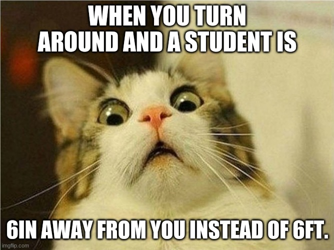 Suprised Cat |  WHEN YOU TURN AROUND AND A STUDENT IS; 6IN AWAY FROM YOU INSTEAD OF 6FT. | image tagged in suprised cat | made w/ Imgflip meme maker