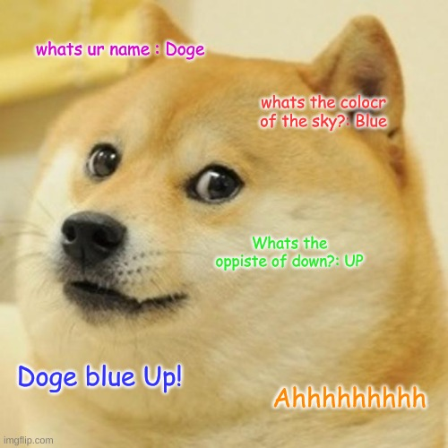 Doge |  whats ur name : Doge; whats the colocr of the sky?: Blue; Whats the oppiste of down?: UP; Doge blue Up! Ahhhhhhhhh | image tagged in memes,doge | made w/ Imgflip meme maker