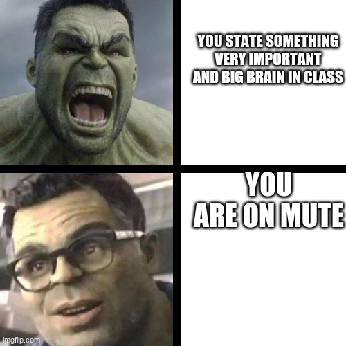 some random zoom meme |  YOU STATE SOMETHING VERY IMPORTANT AND BIG BRAIN IN CLASS; YOU ARE ON MUTE | image tagged in angry hulk vs civil hulk | made w/ Imgflip meme maker