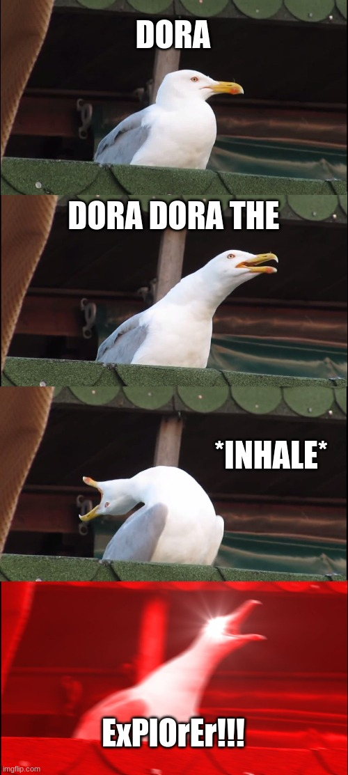 DORA DORA DORA |  DORA; DORA DORA THE; *INHALE*; ExPlOrEr!!! | image tagged in memes,inhaling seagull,dora the explorer | made w/ Imgflip meme maker