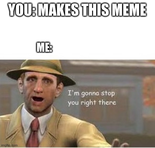 YOU: MAKES THIS MEME ME: | image tagged in im going to stop you right there | made w/ Imgflip meme maker