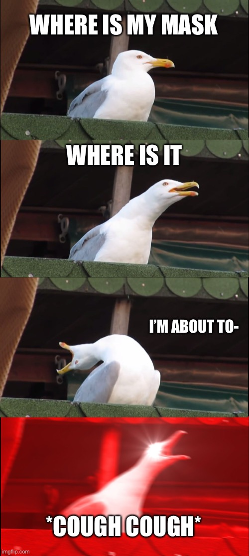 Covid-19 No mask |  WHERE IS MY MASK; WHERE IS IT; I'M ABOUT TO-; *COUGH COUGH* | image tagged in memes,inhaling seagull,covid-19 | made w/ Imgflip meme maker