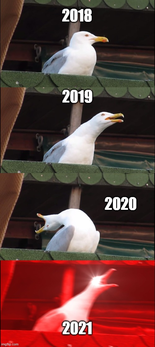 Meme |  2018; 2019; 2020; 2021 | image tagged in memes,inhaling seagull | made w/ Imgflip meme maker