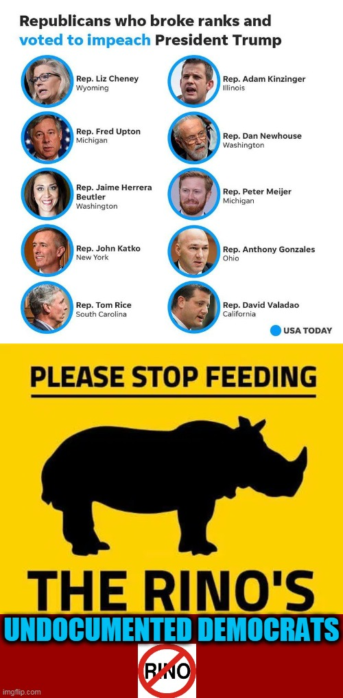 RINOs=Radical Impostors New Offenders' List |  UNDOCUMENTED DEMOCRATS | image tagged in political meme,rino,scumbag republicans,sheep,disgusting,democratic socialism | made w/ Imgflip meme maker