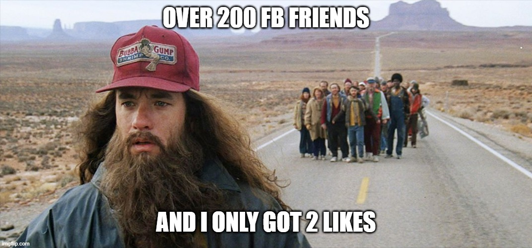 Forest |  OVER 200 FB FRIENDS; AND I ONLY GOT 2 LIKES | image tagged in forrest gump | made w/ Imgflip meme maker