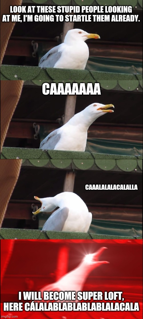 Inhaling Seagull Meme |  LOOK AT THESE STUPID PEOPLE LOOKING AT ME, I'M GOING TO STARTLE THEM ALREADY. CAAAAAAA; CAAALALALACALALLA; I WILL BECOME SUPER LOFT, HERE CÁLALABLABLABLABLALACALA | image tagged in memes,inhaling seagull | made w/ Imgflip meme maker