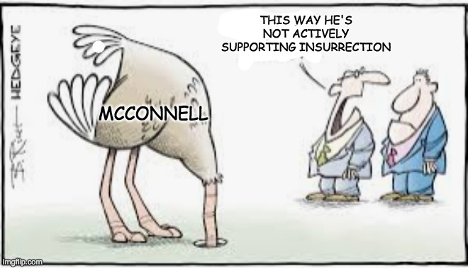 Compromise position |  THIS WAY HE'S NOT ACTIVELY SUPPORTING INSURRECTION; MCCONNELL | image tagged in head in sand ostrich,senate,impeachment | made w/ Imgflip meme maker