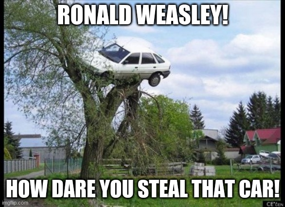 Secure Parking |  RONALD WEASLEY! HOW DARE YOU STEAL THAT CAR! | image tagged in memes,secure parking,harry potter,ron weasley | made w/ Imgflip meme maker