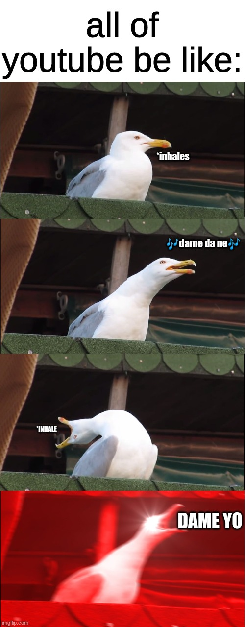 ?dame na no yo? |  all of youtube be like:; *inhales; 🎶dame da ne🎶; *INHALE; DAME YO | image tagged in memes,inhaling seagull | made w/ Imgflip meme maker