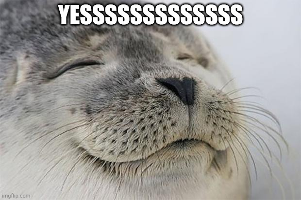 Satisfied Seal Meme | YESSSSSSSSSSSSS | image tagged in memes,satisfied seal | made w/ Imgflip meme maker