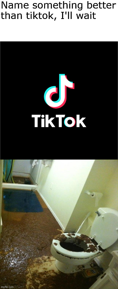 It's true tho | image tagged in name something better than tiktok i'll wait | made w/ Imgflip meme maker