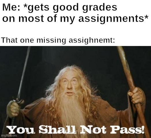 true story |  Me: *gets good grades on most of my assignments*; That one missing assignment: | image tagged in gandalf you shall not pass,school | made w/ Imgflip meme maker