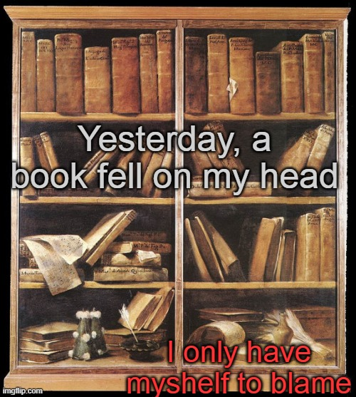 GAAAAAAAAAAHHHHHHHHHHHH |  Yesterday, a book fell on my head; I only have myshelf to blame | image tagged in bookshelf | made w/ Imgflip meme maker
