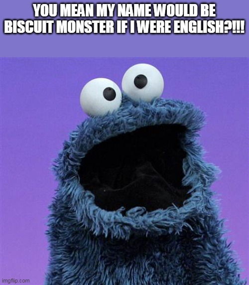 Biscuit not cookie? |  YOU MEAN MY NAME WOULD BE BISCUIT MONSTER IF I WERE ENGLISH?!!! | image tagged in cookie monster,uk,usa,english,words,memes | made w/ Imgflip meme maker