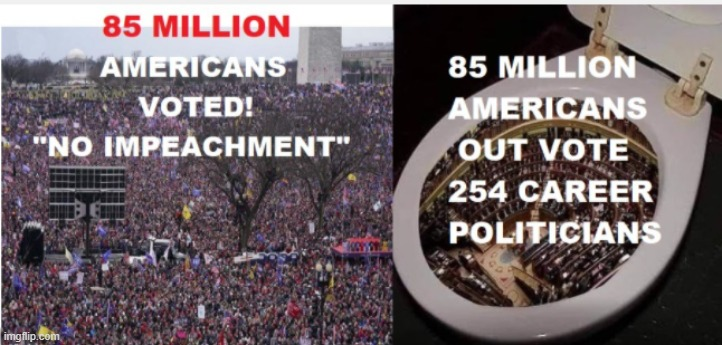 85 Million American's disagree with impeachment  vs. 254 career politicians. | image tagged in nazi,presidential election,democrat congressmen,republican party | made w/ Imgflip meme maker