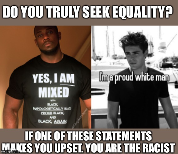 You can't achieve equality with more racism |  DO YOU TRULY SEEK EQUALITY? IF ONE OF THESE STATEMENTS MAKES YOU UPSET. YOU ARE THE RACIST | image tagged in racism,equality,no racism,that's racist | made w/ Imgflip meme maker