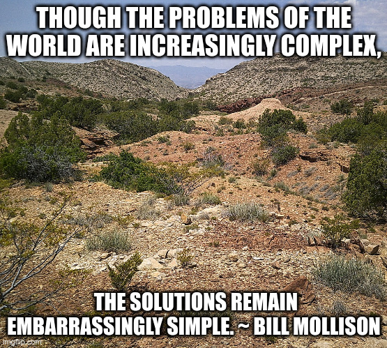 The contrast is striking |  THOUGH THE PROBLEMS OF THE WORLD ARE INCREASINGLY COMPLEX, THE SOLUTIONS REMAIN EMBARRASSINGLY SIMPLE. ~ BILL MOLLISON | image tagged in first world problems,solutions,simple | made w/ Imgflip meme maker
