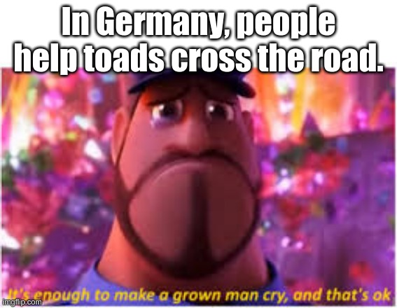 fact/meme #5 |  In Germany, people help toads cross the road. | image tagged in its enough to make a grown man cry and thats ok | made w/ Imgflip meme maker
