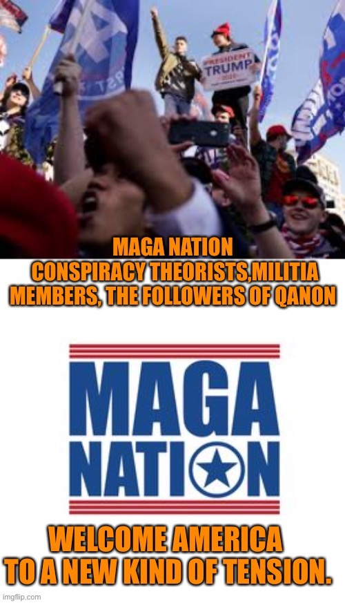 MAGA be like bedbugs, once they settle in 'it' becomes an infestation | image tagged in donald trump,maga,treason,joe biden,president,inauguration day | made w/ Imgflip meme maker