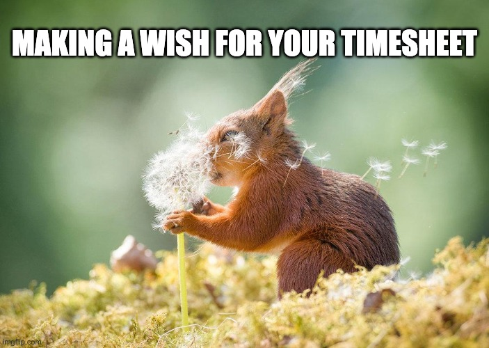 making a wish for your timesheet |  MAKING A WISH FOR YOUR TIMESHEET | image tagged in making a wish for your timesheet,timesheet reminder,timesheet meme | made w/ Imgflip meme maker