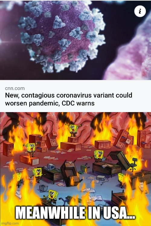 xxx***Lik dis if u cry evertim***xxx |  MEANWHILE IN USA... | image tagged in spongebob fire,coronavirus,covid-19 | made w/ Imgflip meme maker