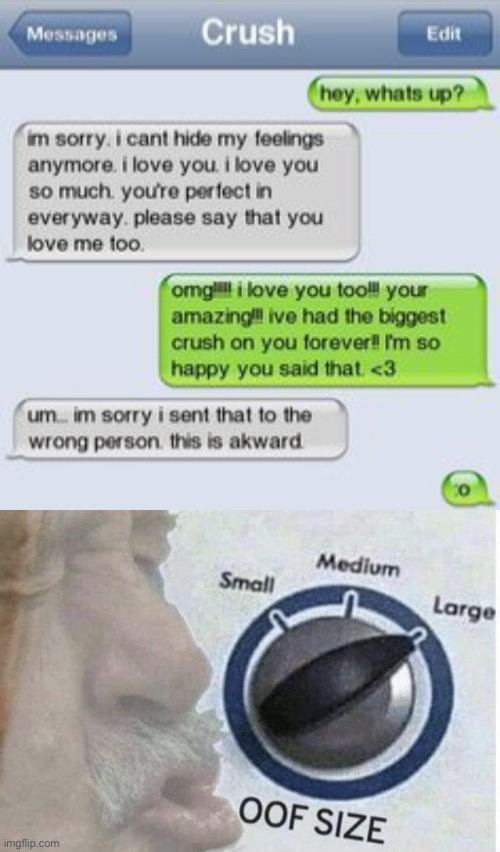 OOF | image tagged in oof size large,funny,memes,texts,boy and girl texting,awkward moment sealion | made w/ Imgflip meme maker