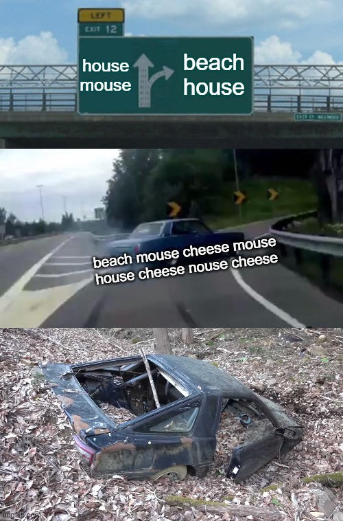 house mouse; beach house; beach mouse cheese mouse house cheese nouse cheese | image tagged in memes,left exit 12 off ramp,crashed car | made w/ Imgflip meme maker