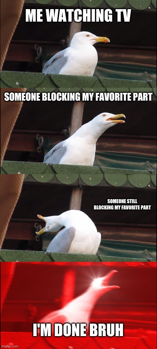 tv rage |  ME WATCHING TV; SOMEONE BLOCKING MY FAVORITE PART; SOMEONE STILL BLOCKING MY FAVORITE PART; I'M DONE BRUH | image tagged in memes,inhaling seagull | made w/ Imgflip meme maker