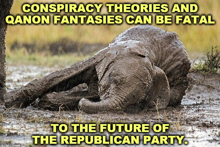Stupid is as stupid does, and there's a lot of stupidity in the GOP. |  CONSPIRACY THEORIES AND QANON FANTASIES CAN BE FATAL; TO THE FUTURE OF THE REPUBLICAN PARTY. | image tagged in the republican elephant after trump's takeover,conspiracy theories,qanon,fantasy,stupid,gop | made w/ Imgflip meme maker