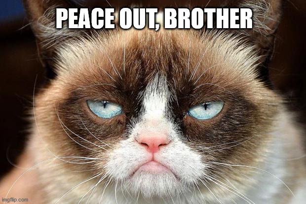 Grumpy Cat Not Amused |  PEACE OUT, BROTHER | image tagged in memes,grumpy cat not amused,grumpy cat | made w/ Imgflip meme maker