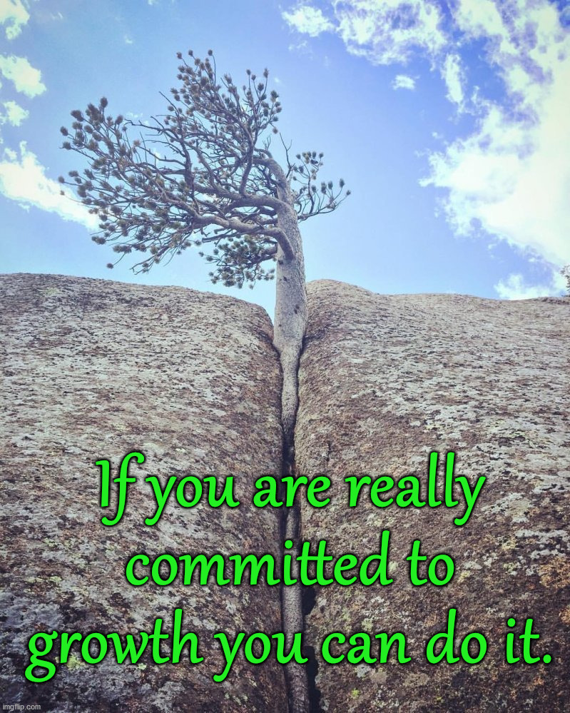 Wholesome Sunday inspiration. |  If you are really committed to growth you can do it. | image tagged in inspiration,growth,you can do it | made w/ Imgflip meme maker