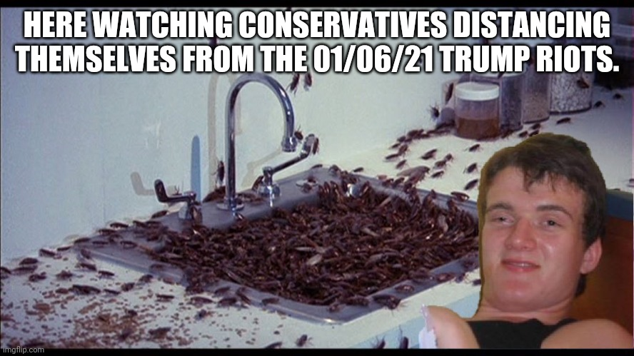 Hiding like roaches |  HERE WATCHING CONSERVATIVES DISTANCING THEMSELVES FROM THE 01/06/21 TRUMP RIOTS. | image tagged in conservatives,donald trump,trump supporters,maga,joe biden,nevertrump | made w/ Imgflip meme maker