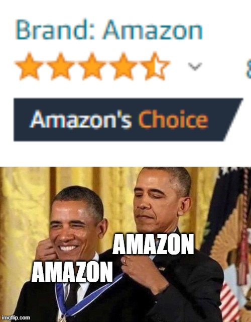 hmmm |  AMAZON; AMAZON | image tagged in obama medal | made w/ Imgflip meme maker
