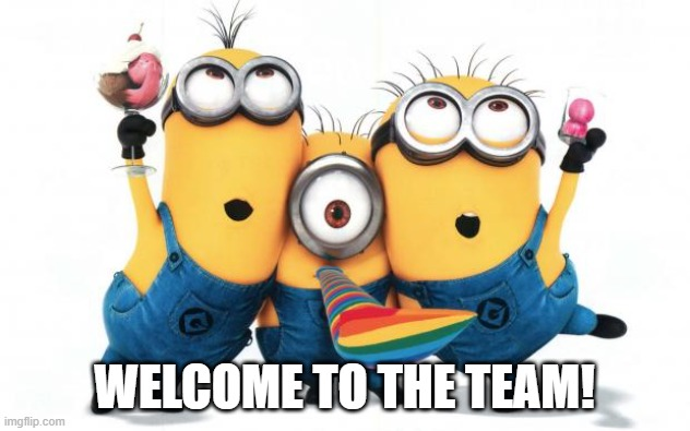 Minion party despicable me |  WELCOME TO THE TEAM! | image tagged in minion party despicable me | made w/ Imgflip meme maker