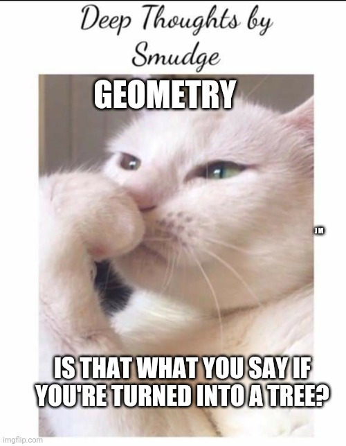 Smudge |  GEOMETRY; J M; IS THAT WHAT YOU SAY IF YOU'RE TURNED INTO A TREE? | image tagged in smudge | made w/ Imgflip meme maker