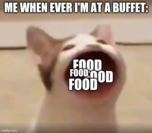 me at a buffet: |  ME WHEN EVER I'M AT A BUFFET:; FOOD; FOOD; FOOD; FOOD | image tagged in wide mouth cat | made w/ Imgflip meme maker