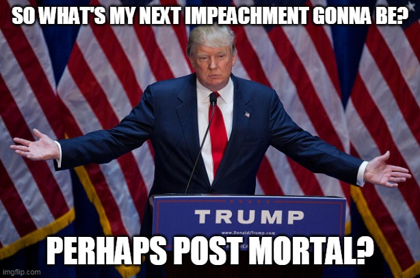 Donald Trump |  SO WHAT'S MY NEXT IMPEACHMENT GONNA BE? PERHAPS POST MORTAL? | image tagged in donald trump,potus,maga,usa | made w/ Imgflip meme maker